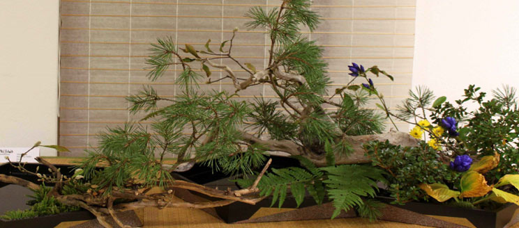 Bild von Ikebana International Chapter Basel